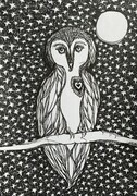 The Wisdom Owl SOLD